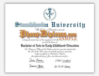Stockholm University - Fake Diploma Sample from Sweden